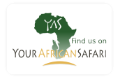 your-african-safari